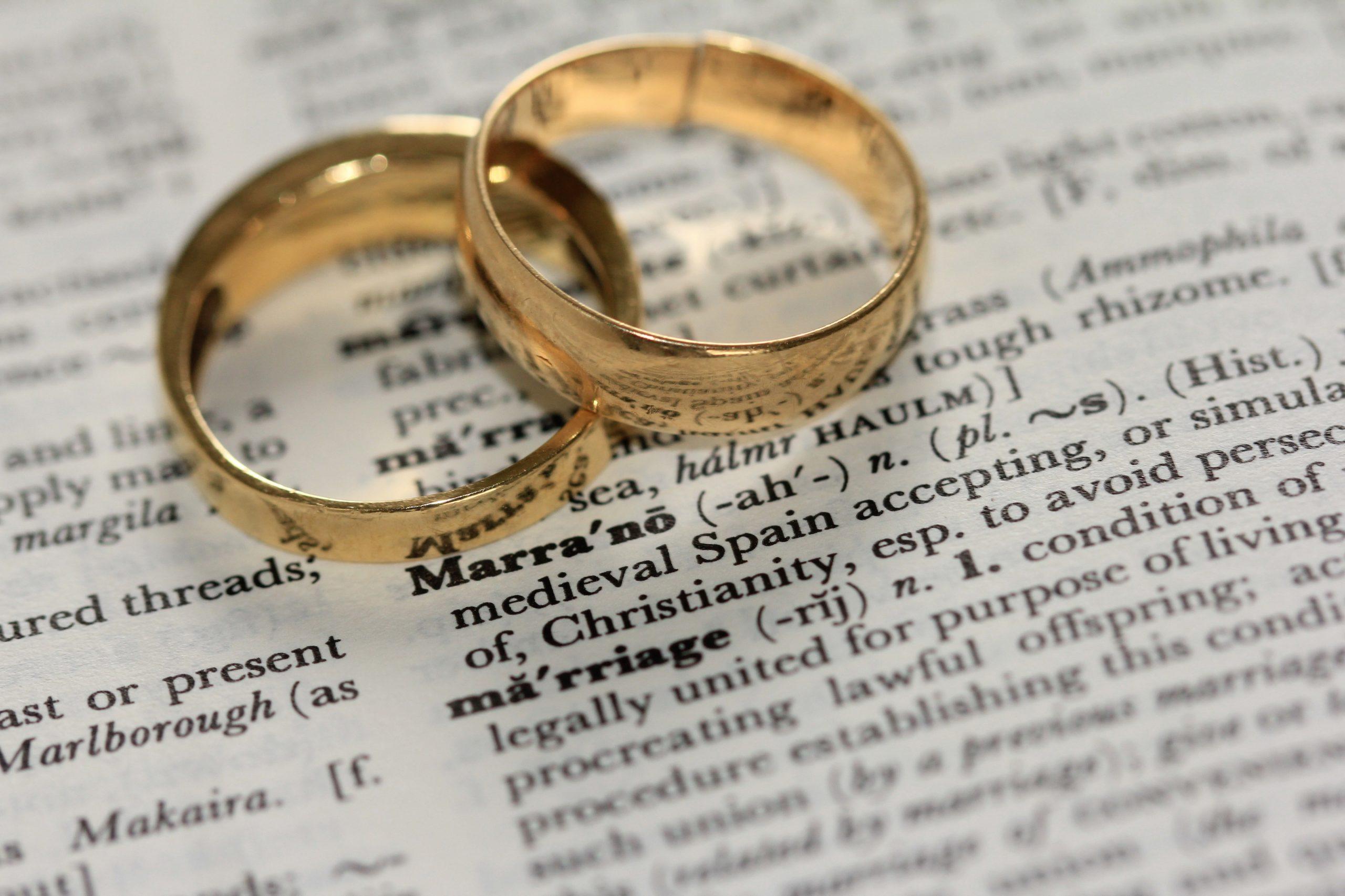 wedding rings | Wesley Chapel, FL